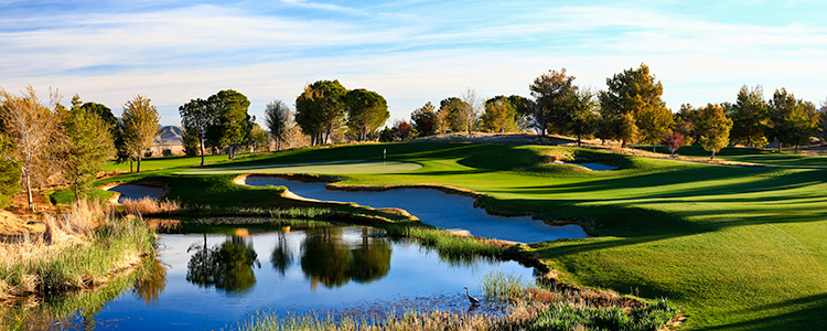 Primm Valley Lakes Golf Club #15 - Photo By Brian Oar - All Rights Reserved 2016